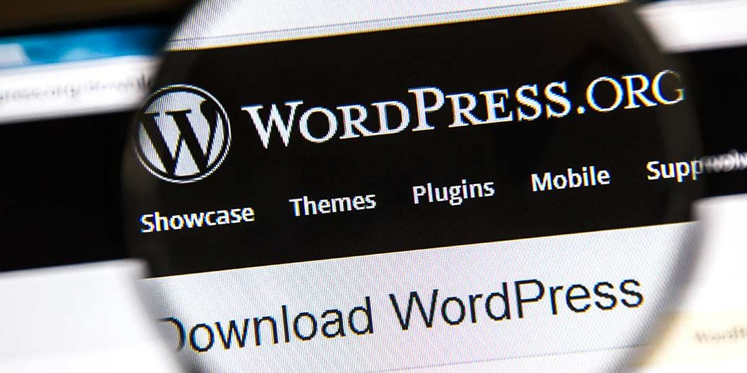 Image of a computer screen on the page wordpress.org